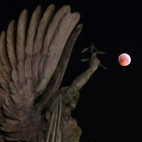 In Pictures: The rare super blood wolf moon