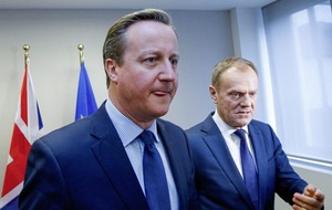 Tory party was David Cameron's `only reason for dangerous, stupid EU referendum'