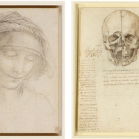 Exhibition of Leonardo da Vinci drawings opens at Belfast's Ulster Museum on February 1