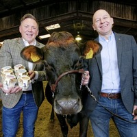Successful local partnership drives yoghurt sales up by 200% at Newry-based Around Noon
