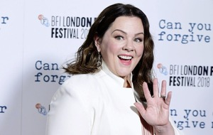 Melissa McCarthy: It more digestible for people to know what box you're in