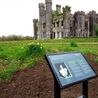 Historic border castle which was birthplace of prominent unionist 'in need of urgent repairs'