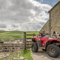 Farm income falls to £26,030 amid new concern on future CAP payments