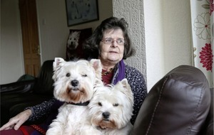 Rosie's Trust: The charity that helps sick and frail owners stay with their beloved pets