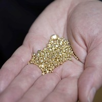 Judgment reserved in Dalradian gold mining case