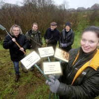Belfast residents' group plants seeds for million trees plan