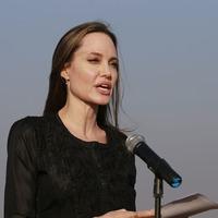 Jolie urges Burma to end violence against Rohingya Muslims