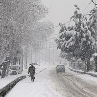 Four trapped after avalanches and landslides kill eight in Kashmir