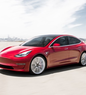 Tesla to introduce pet-saving Dog Mode for Model 3