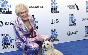 Glenn Close walks Independent Spirit Awards blue carpet with her dog