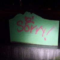 Vandals 'apologise for racist graffiti with spray-painted sorry'