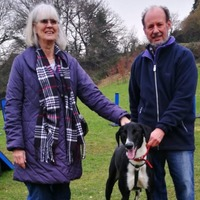 'Loneliest dog in Britain' re-homed after 500 days in shelter