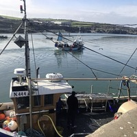 Seizure of Co Down fishing boats 'truly regrettable', taoiseach says