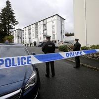 Neighbour suspect in Newry double murder-suicide