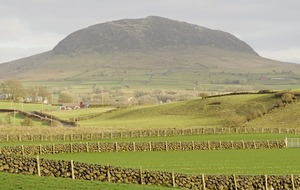 Nuala McCann: Still my holy mountain, Slemish, rests easy on the gaze