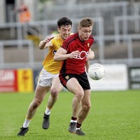 Momentum with Down as Carlow look to spoil party in Dr Cullen Park