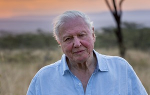 Netflix drops first full trailer for David Attenborough's Our Planet