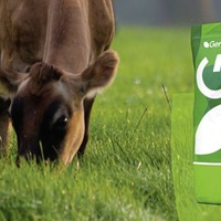 Little growth at seed firm Germinal as it sells off Morton's brand