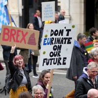 Fromage not Farage: Protesters and their placards march on Westminster