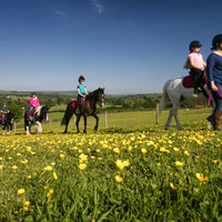 There's fantastic family fun everywhere in Northern Ireland this Easter