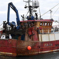 Fishing boat finds human remains in sea off Co Down