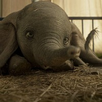 Tim Burton's Dumbo remake is no big deal