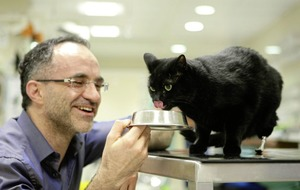 Supervet Noel Fitzpatrick on life, death, love & medicine