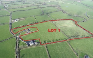 Fields for sale straddling border in Louth