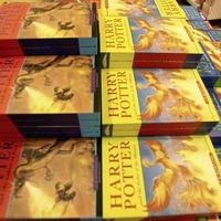 Poland priest apologises for burning Harry Potter books