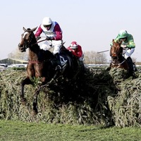 Jake O'Kane: When the chips are down, betting on the Grand National isn't for me
