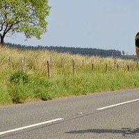 Co Tyrone cyclist who died on way home from bike ride 'loved and highly respected'