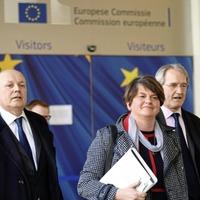 DUP leader focuses on backstop concerns in talks with EU negotiator