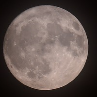 Pink Moon set to grace the skies