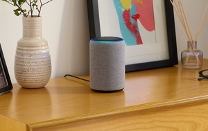Government information made accessible via smart speakers