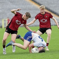 John McEntee: Young players need to learn to take the knocks and bounce back