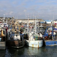 Probe after crewman dies in Kilkeel fishing boat accident
