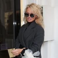Pamela Anderson to visit Julian Assange in prison
