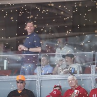 Baseball game delayed due to swarm of bees in stadium