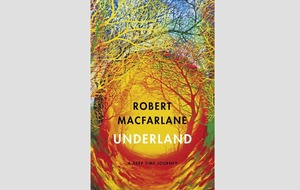 Book reviews: Jim Al-Khalili's science-to-fiction, Robert Macfarlane goes underground