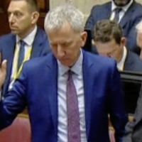 Businesswoman contradict's Máirtín Ó Muilleoir's RHI Inquiry claims about spad appointments