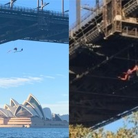 Greenpeace protesters dangle from Sydney Harbour Bridge