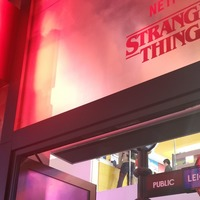 Lego mania turns Upside Down as fans wait all day for £179 Stranger Things set
