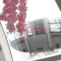 London Eye's flower capsule will be Instagram gold for lucky few