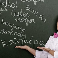 Study of languages in schools in sharp decline
