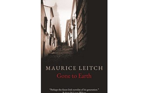 Book reviews: New from Maurice Leitch, Olivia Kiernan, Mark Haddon, Denise Mina