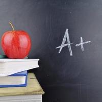 Teachers' action effectively shelves school support scheme