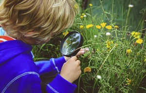 Seven 'random acts of wildness' for nature-loving families to try