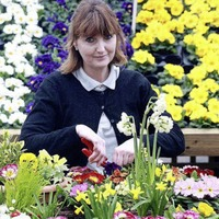 Belfast garden designer scoops gold at Irish Bloom festival
