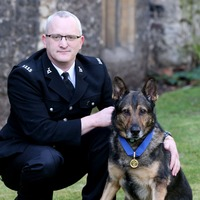 Dave Wardell and police dog impress on BGT after Queen signs Finn's Law