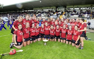 Down forced to work hard by Antrim to retain Ulster crown